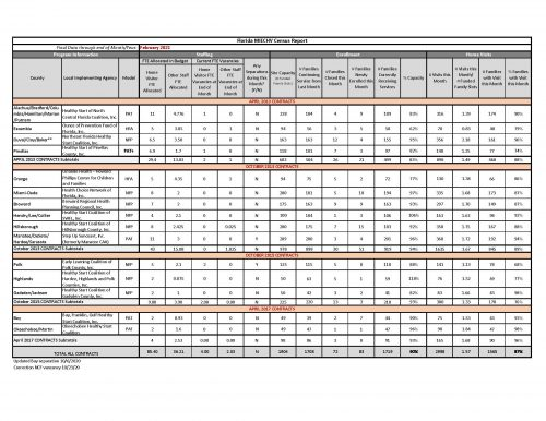 CDQR Summary February 2021